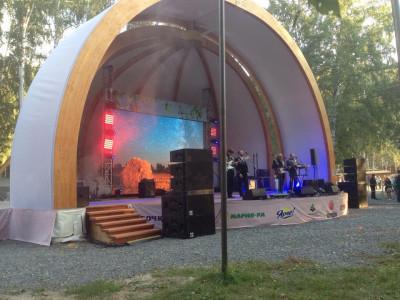 Фестиваль топора в г. Томск